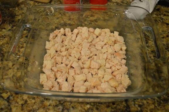 1st layer: chicken